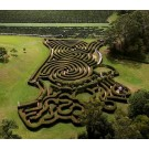Bago Maze and Winery Package